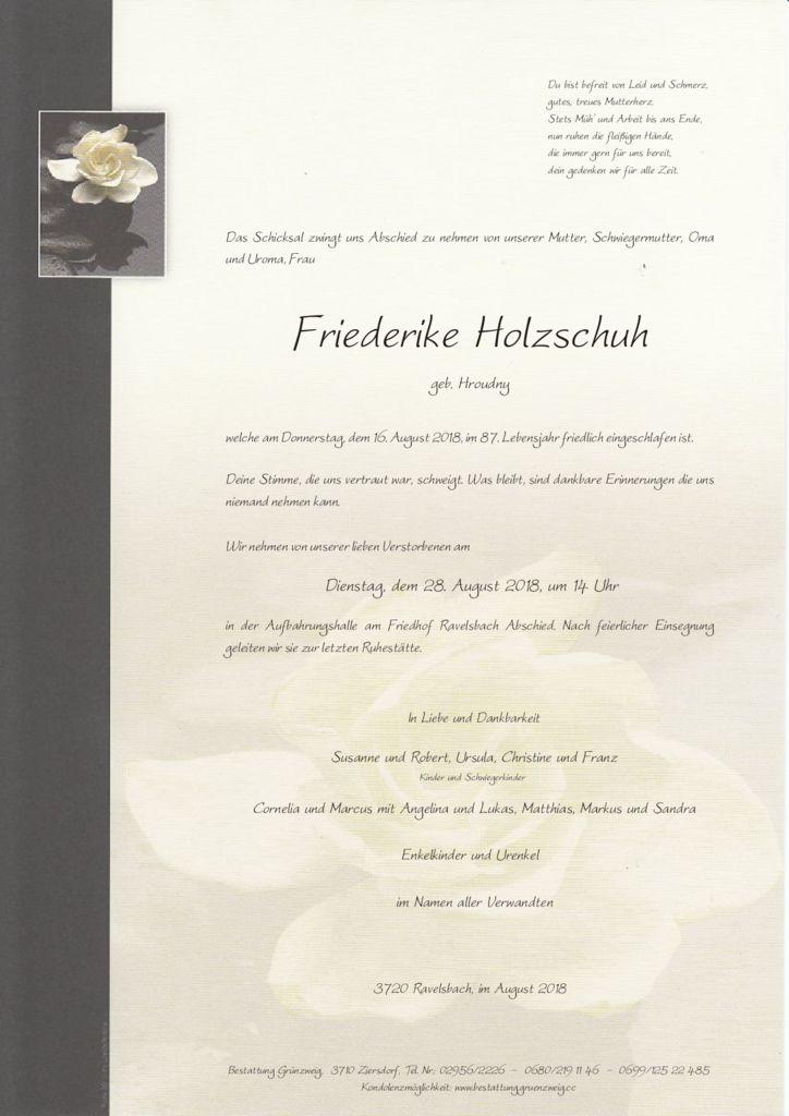 Friederike Holzschuh