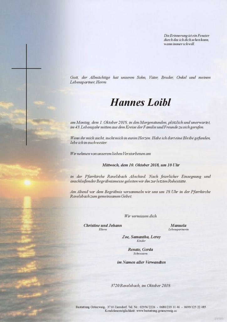 Hannes Loibl