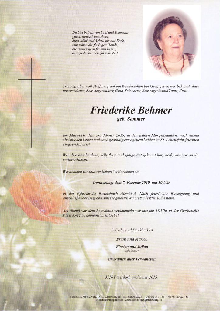Friederike Behmer