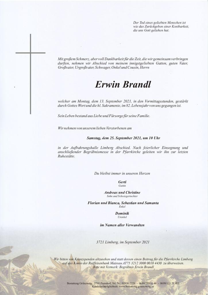 Erwin Brandl