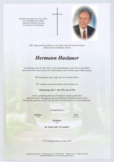 Hermann Haslauer